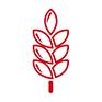 Icon glutenhaltiges Getreide