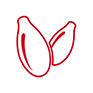 Icon Sesamsamen